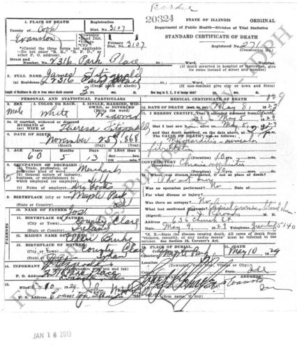 James Fitzgerald Death Cert